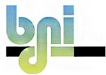Logo BdNI
